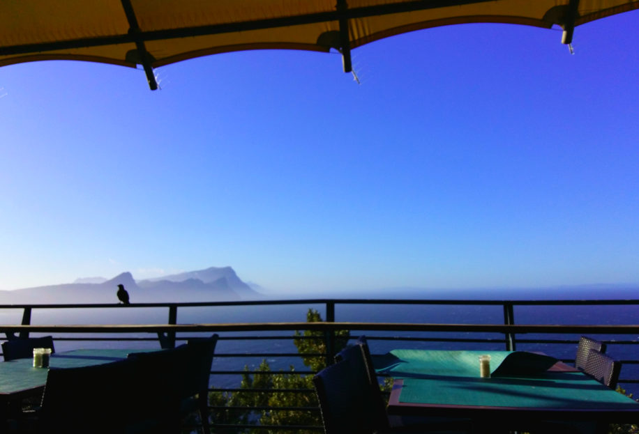 View from Cape Point's Restaruant